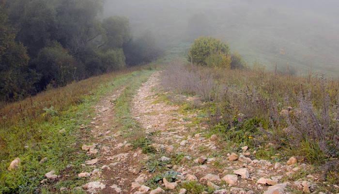 езда по каменистой дороге